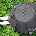 Umbrella Dreams by Peace Monger