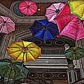 Umbrella Fun by Joan  Minchak