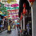 Umbrella Street by Matt Malloy