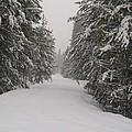 Unbroken Trail by Jewel Hengen