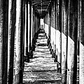 Under Huntington Beach Pier Black And White Picture by Paul Velgos