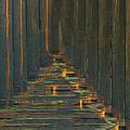 Under The Boardwalk by Jack Zulli
