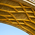 Under The Bridge by Christi Kraft