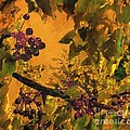 Under The Chokecherry Tree by Janette Boyd