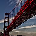 Under The Golden Gate by Shirley Mangini