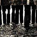 Under The Pier by Avis  Noelle
