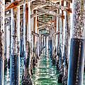Under The Pier by Chris Brannen