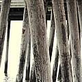 Under The Pier Ocean City Nj by James DeFazio