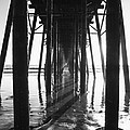 Under The Pier by Timothy Johnson