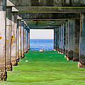 Under The Pier by Zina Stromberg