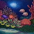Undersea Creatures Vi by Michael Frank
