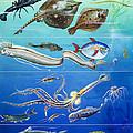 Underwater Creatures Montage by English School