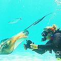 Underwater Photography by Halifax Artist John Malone