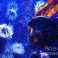 Underwater Swarm by Ron  Tackett