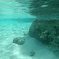Underwater Tropical Island Photography by