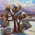 Unexpected Snowfall At Joshua Tree by Diane McClary