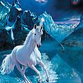 Unicorn by Andrew Farley