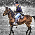 Union Horse Officer by John Straton