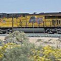 Union Pacific by Robert Carpenter
