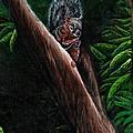 Union Squirrel by Stephanie Knight