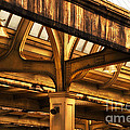 Union Station Roof Structure by Thomas Woolworth