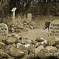 Unique Cemetery Image by John Malone