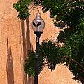 Unique Roswell Street Light by John Malone