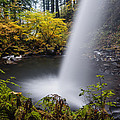 Unique View Of Ponytail Falls by Vishwanath Bhat