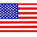 United States 50 Stars Flag by Frederick Holiday
