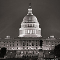 United States Capitol At Night by Olivier Le Queinec