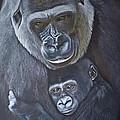 United - Western Lowland Gorillas by Jill Parry