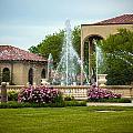 Unity Village Rose Garden by Sennie Pierson