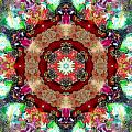 Universe by Lisa Lipsett