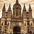 University Entrance Door Sepia by Douglas Barnett
