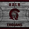 University Of Arkansas At Little Rock Trojans by Joe Hamilton