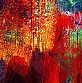 Untamed Colors  by Prakash Ghai