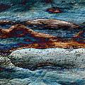 Untamed Sea 2 by Carol Cavalaris