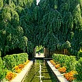 Untermyer Gardens And Park by Diana Angstadt