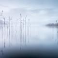 Untitled by David Ahern