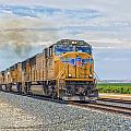 Up4421 by Jim Thompson