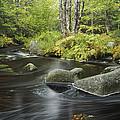 Upper Bear River In Early Autumn Nova by Scott Leslie