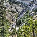 Upper Bear River Valley by SC Heffner