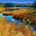 Upper Cary Lake In The Adirondacks by David Patterson