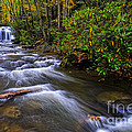 Upper Falls by Thomas R Fletcher