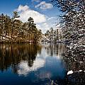 Upper Pond 2 by Dennis Coates