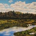 Upper Sacandaga River by Nancie Johnson