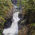 Upper Twin Falls by Darleen Stry