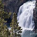 Upper Yellowstone Falls by Bob Phillips