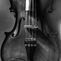 Upright Violin Bw by J M Lister