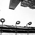 Upside Of Lexington by Karol Livote